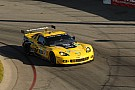 Gavin and Corvette Racing gearing up for endurance racing in California