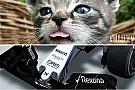 Lotus pokes fun at Williams' 2015 nose