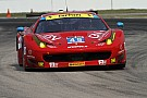 Enzo Potolicchio joins AF Corse for the 2015 12 Hours of Sebring