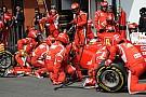 Il gambero Rosso, Rossi e la Rossa