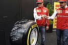 Tutti i piloti hanno firmato la gomma Pirelli PZero