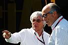 Exclusiva: Imola busca revivir el Gran Premio de Italia