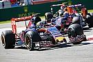 Newey: 'Toro Rosso en Honda in 2016 beter dan Red Bull'