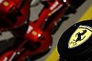Ferrari'de hata tekrarı olmayacak