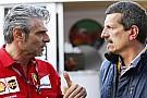 Haas 2017 için kadrosunu genişletmeyi planlıyor