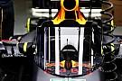 Екран від Red Bull: Хюлькенберг – за, Хемільтон - проти