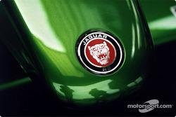 Close-up, Jaguar R2