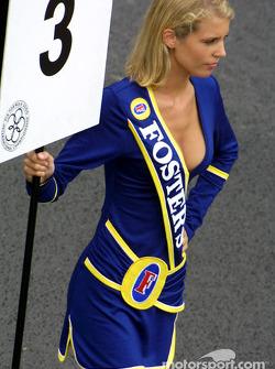 F3000 grid girl