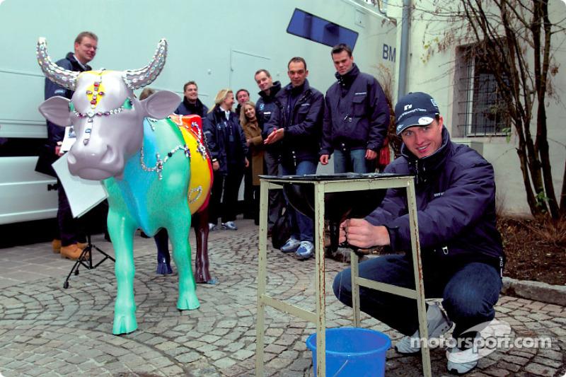 Ralf Schumacher BMW WilliamsF1 Team driver 2002 has ago at milking a cow