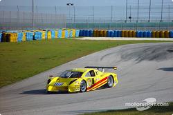 #8 G&W Motorsports BMW Picchio DP2: Darren Law, Shawn Bayliff