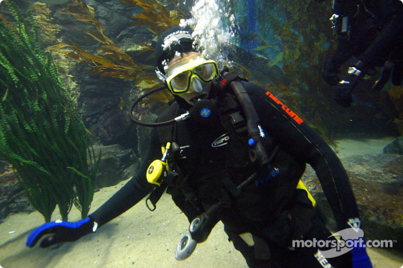 Justin Wilson swims with sharks in the Melbourne aquarium