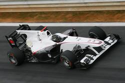 Nick Heidfeld, Test Driver, Mercedes GP