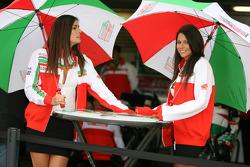 Castrol Honda girls
