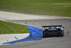#31 MP1A Lamborghini Gallardo R GT3, Sergio Lagana, Champ 1 Motorsports