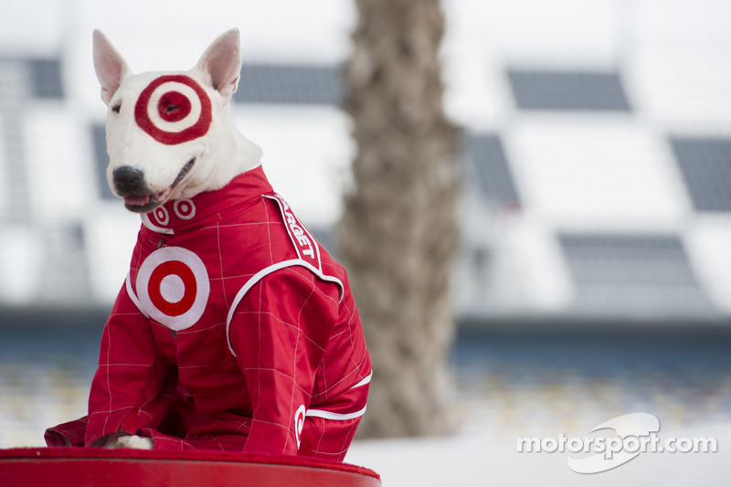 The Target Dog Spot At Daytona 500