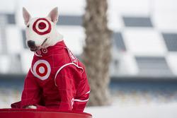 The Target dog, Spot