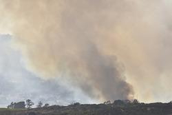 Yerel bir yangının dumanı