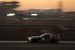 #233 Besagroup Racing Mercedes-AMG GT R SP-X: Franjo Kovac, Cora Schumacher, Roland Asch, Sebastian Asch