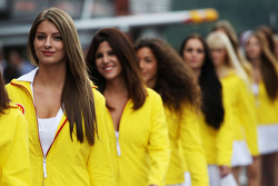 Chicas Shell