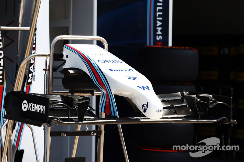 Williams FW36 alettone frontale