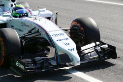 驾驶威廉姆斯FW36赛车的菲利普·马萨的赛车前翼