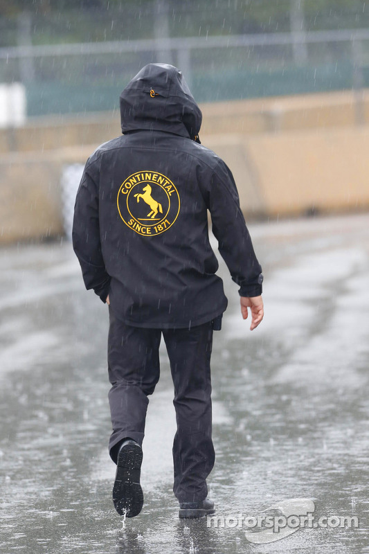 Chuva no paddock
