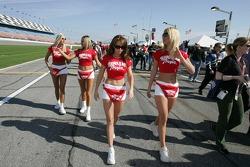 Hawaiian Tropic girls walk to the starting grid
