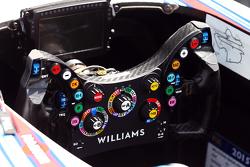 威廉姆斯 FW37 方向盘