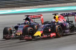 Daniel Ricciardo, Red Bull Racing dan Max Verstappen, Scuderia Toro Rosso