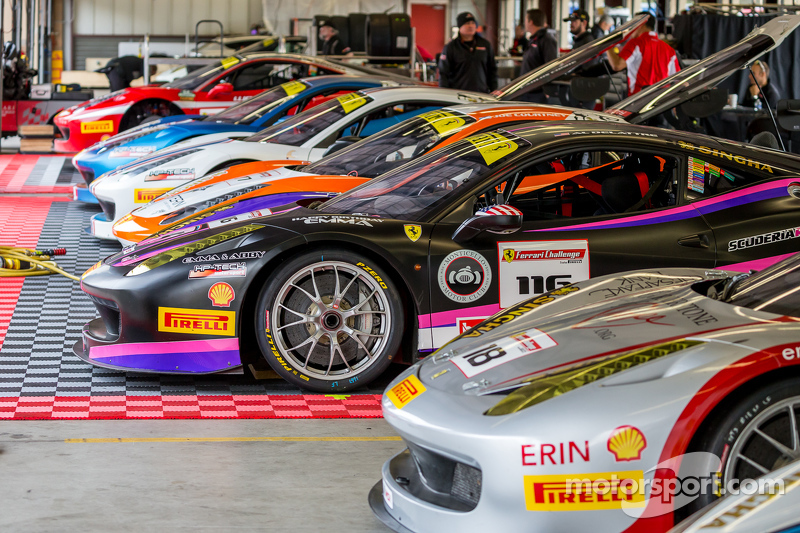 Ferrari-Challenge, Autos
