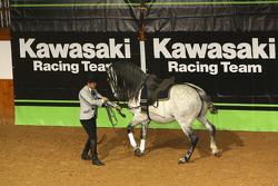 Kawasaki Racing Team: entertainment at the presentation