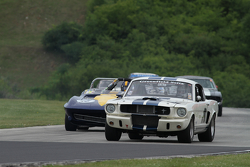 Shelby GT350 1965