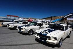 Klassieke Fords