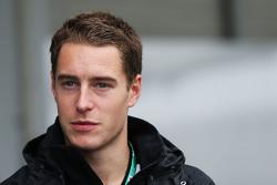 Стоффель Вандорн, тестовый и резервный пилот McLaren