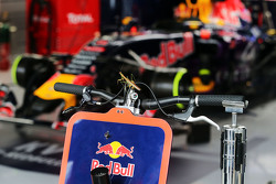 Praying Mantis Red Bull Racing garajına katılıyor