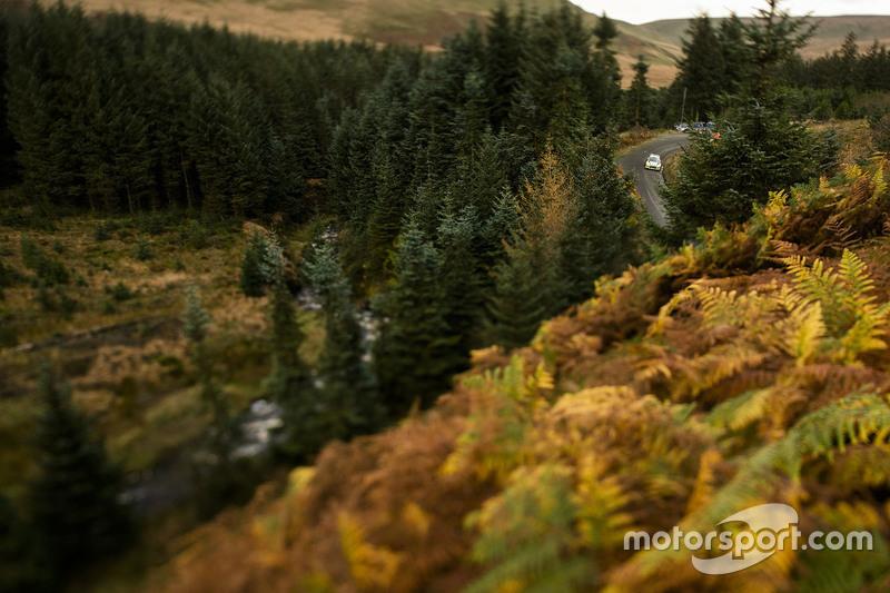 Sfeervolle foto van het bosrijke gebied