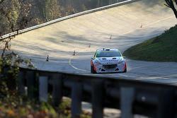 Stefano Albertini und Gianluigi Niboli, Peugeot 208 T16
