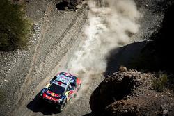 Сириль Депре и Давид Кастера, #321 Peugeot