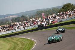 Sussex Trophy race: Aston Martin DBR1