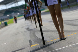 Sunday sprint pre-race