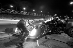 Pitstop #6 Michael Shank Racing Ford Riley: A.J. Allmendinger, Brian Frisselle, Mark Patterson, Michael Valiante