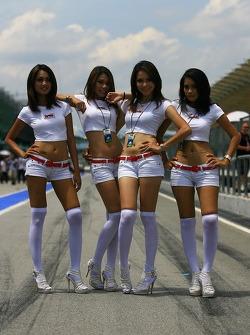 Grid Girls