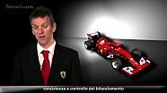 F14 T - Video tecnico