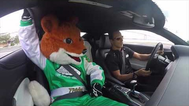 Helio Castroneves gives Pocono Raceway's Tricky The Fox a ride