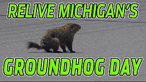 Look back at Michigan's wild Groundhog Day from 2016