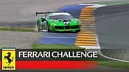 Ferrari Challenge Europe, Valencia 2017 - Trofeo Pirelli race 2