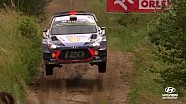 Rally Poland best of: Jumps