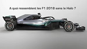 Et si les F1 2018 n'avaient pas de Halo?